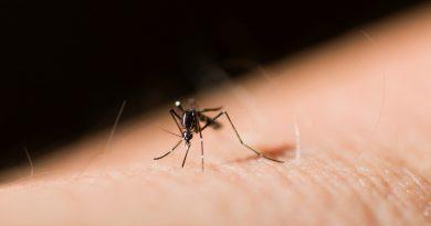 westnijlvirus door muggen